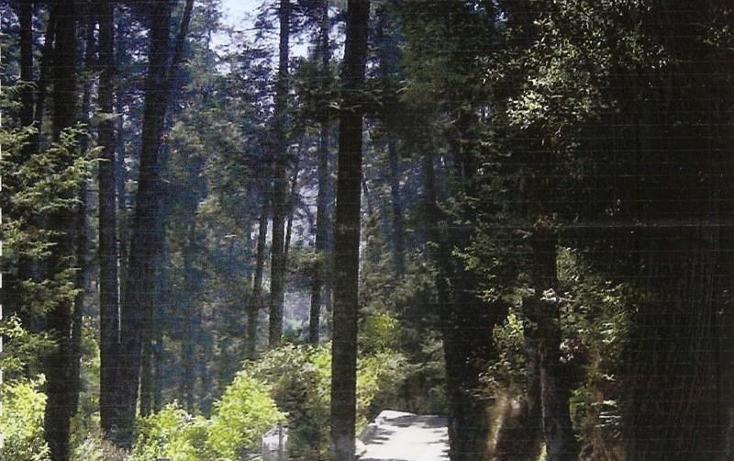 Foto de terreno habitacional en venta en  nonumber, san lorenzo acopilco, cuajimalpa de morelos, distrito federal, 1648182 No. 01
