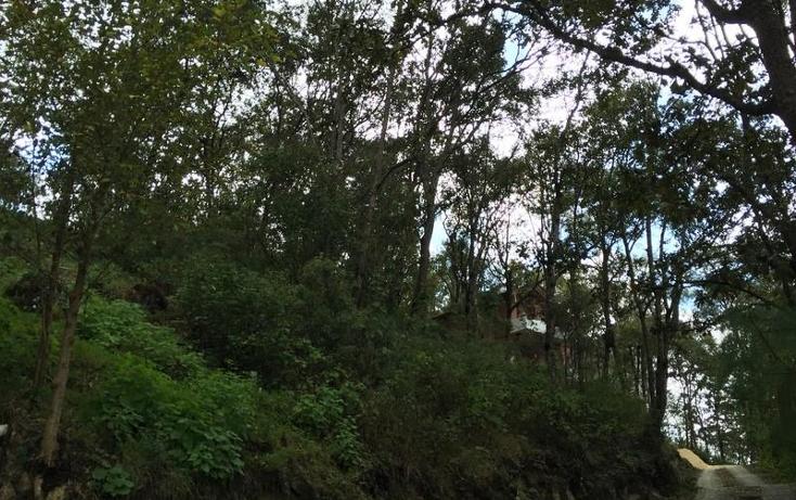 Foto de terreno comercial en venta en  nonumber, san nicolás, san cristóbal de las casas, chiapas, 1847064 No. 02