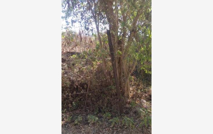 Foto de terreno habitacional en venta en  nonumber, santo domingo barrio alto, villa de etla, oaxaca, 1666634 No. 02