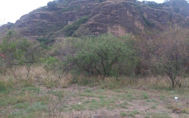 Foto de terreno habitacional en venta en  nonumber, santo domingo, tepoztlán, morelos, 959909 No. 02