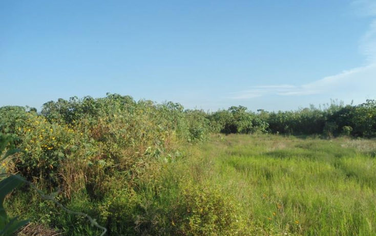 Foto de terreno comercial en venta en  nonumber, tala, tala, jalisco, 1586596 No. 03