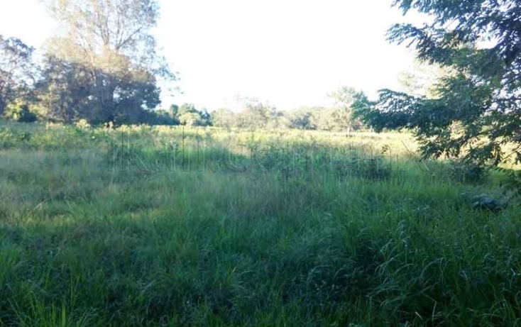 Foto de terreno habitacional en venta en  nonumber, tamiahua, tamiahua, veracruz de ignacio de la llave, 1427999 No. 02
