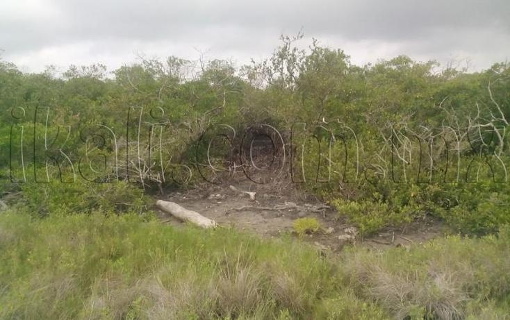 Foto de terreno habitacional en venta en  nonumber, tampamachoco, tuxpan, veracruz de ignacio de la llave, 1223839 No. 10