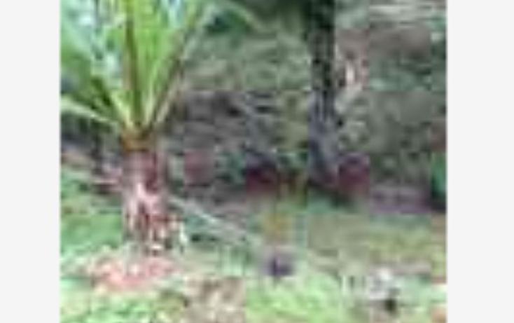 Foto de terreno habitacional en venta en  nonumber, valle de bravo, valle de bravo, méxico, 1231299 No. 05