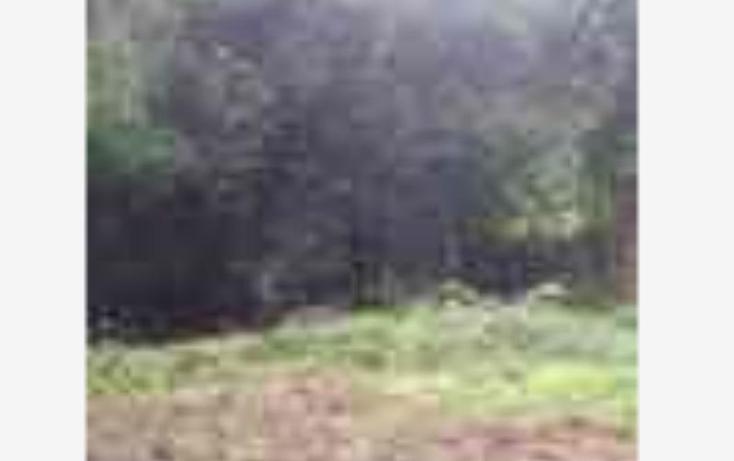 Foto de terreno habitacional en venta en  nonumber, valle de bravo, valle de bravo, méxico, 1231299 No. 06