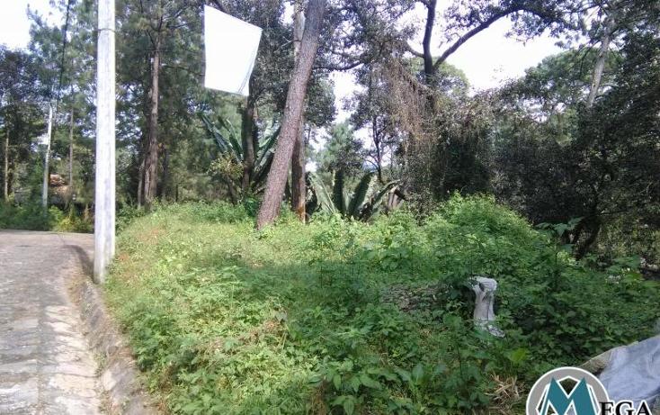 Foto de terreno habitacional en venta en  nonumber, valle de bravo, valle de bravo, méxico, 1231299 No. 08