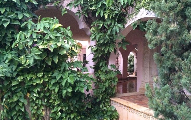 Foto de casa en venta en  , nueva alemán, mérida, yucatán, 1276523 No. 02