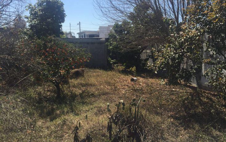 Foto de terreno habitacional en venta en, nueva cadereyta, cadereyta jiménez, nuevo león, 1964246 no 05