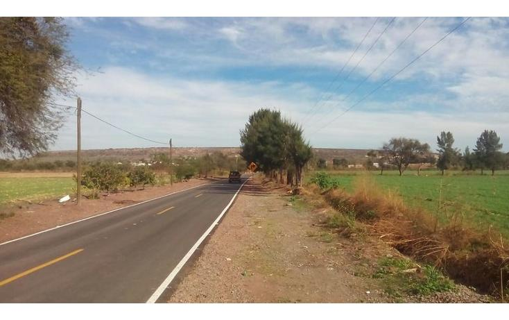 Foto de terreno habitacional en venta en  , nueva guanajuatillo, la piedad, michoacán de ocampo, 1521285 No. 01