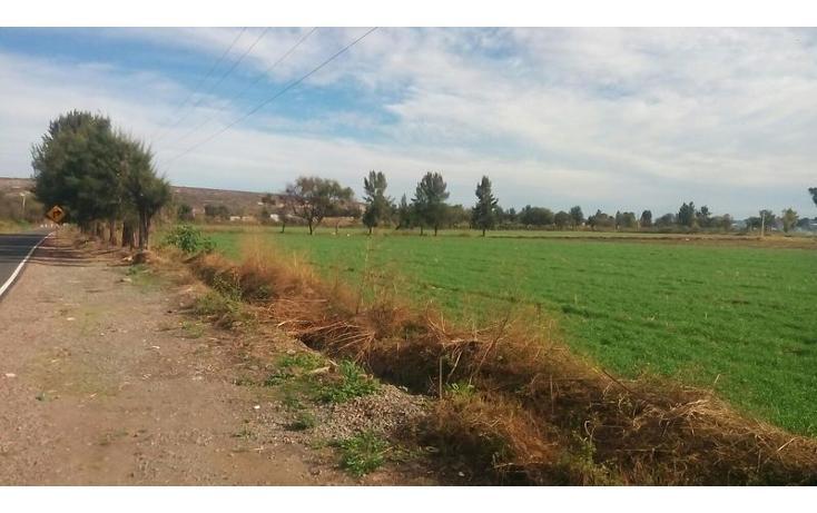 Foto de terreno habitacional en venta en  , nueva guanajuatillo, la piedad, michoacán de ocampo, 1521285 No. 03