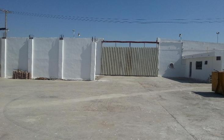 Foto de local en renta en  , nueva laguna sur, torreón, coahuila de zaragoza, 388456 No. 06