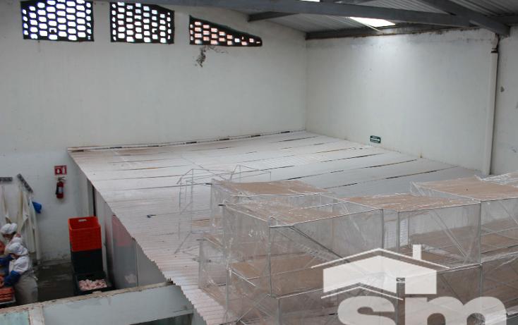 Foto de nave industrial en venta en  , nueva san salvador, puebla, puebla, 1243183 No. 04