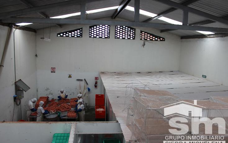 Foto de nave industrial en venta en  , nueva san salvador, puebla, puebla, 1243183 No. 13