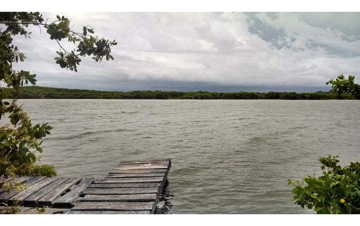 Foto de departamento en renta en  , nueva yucalpeten, progreso, yucat?n, 1293095 No. 02