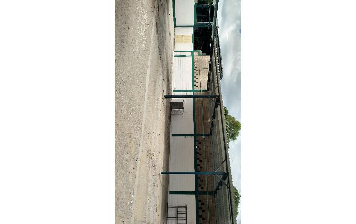 Foto de oficina en renta en  , nuevo aeropuerto, tampico, tamaulipas, 1228261 No. 13