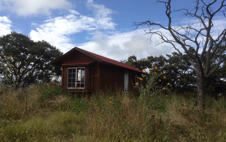 Foto de rancho en venta en  , nuevo, chapantongo, hidalgo, 1053269 No. 17