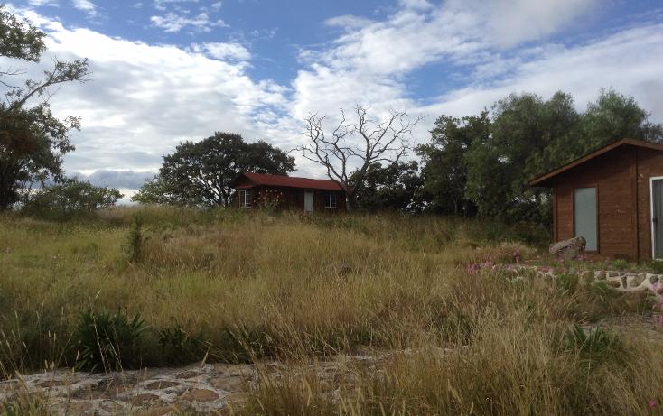 Foto de rancho en venta en  , nuevo, chapantongo, hidalgo, 1053269 No. 22