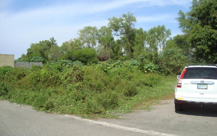 Foto de terreno habitacional en venta en  , nuevo ixtapa, puerto vallarta, jalisco, 452897 No. 02