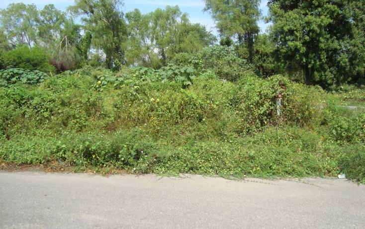 Foto de terreno habitacional en venta en  , nuevo ixtapa, puerto vallarta, jalisco, 452897 No. 05