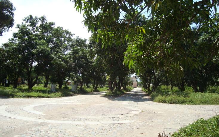 Foto de terreno habitacional en venta en  , nuevo ixtapa, puerto vallarta, jalisco, 452897 No. 10