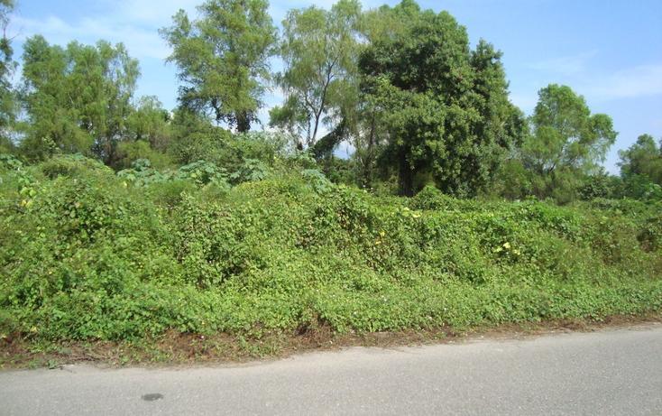 Foto de terreno habitacional en venta en  , nuevo ixtapa, puerto vallarta, jalisco, 452897 No. 13