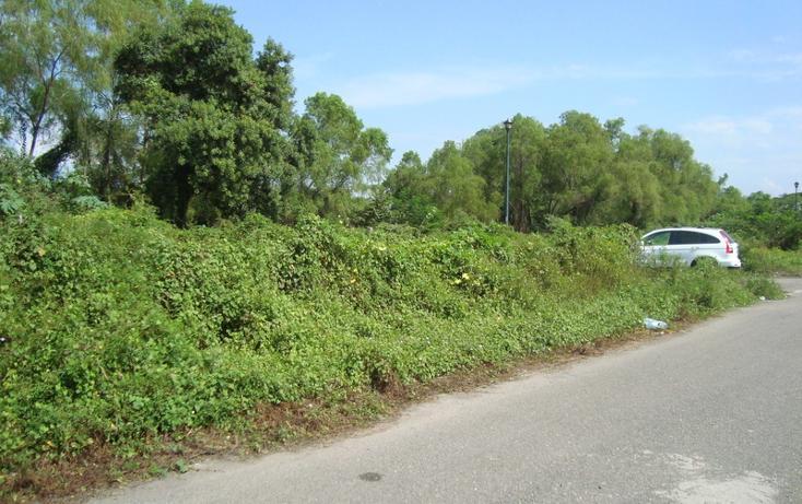 Foto de terreno habitacional en venta en  , nuevo ixtapa, puerto vallarta, jalisco, 452898 No. 04