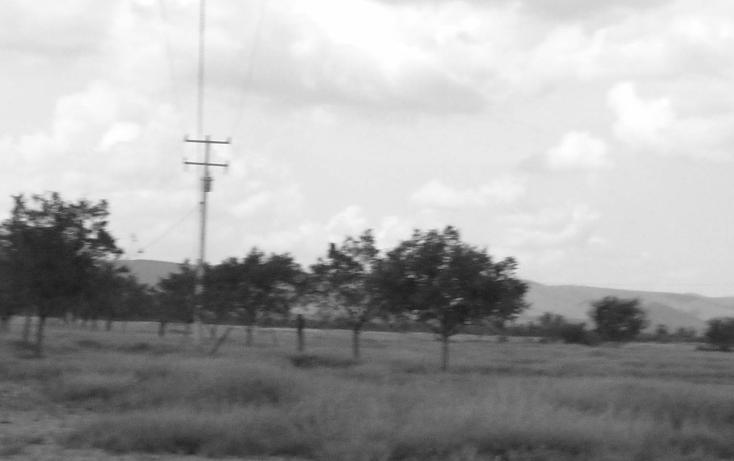 Foto de terreno comercial en venta en  , nuevo mamulique, salinas victoria, nuevo león, 1438027 No. 09