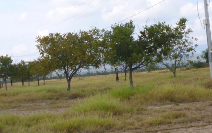 Foto de terreno comercial en venta en  , nuevo mamulique, salinas victoria, nuevo león, 1438027 No. 11