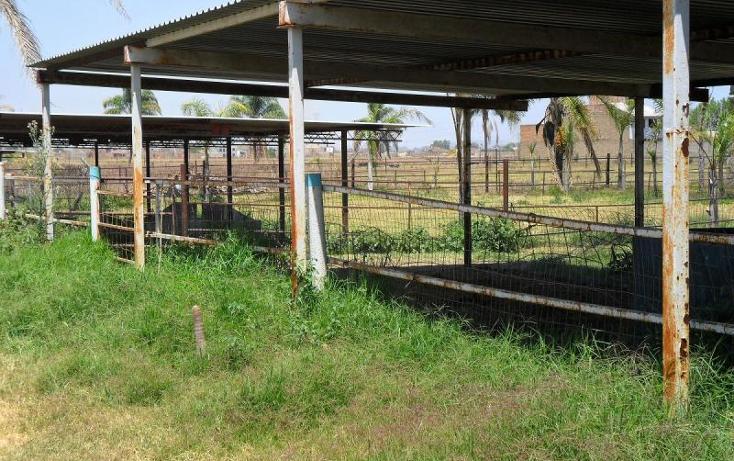 Foto de terreno habitacional en venta en  ----, nuevo méxico, zapopan, jalisco, 380744 No. 10