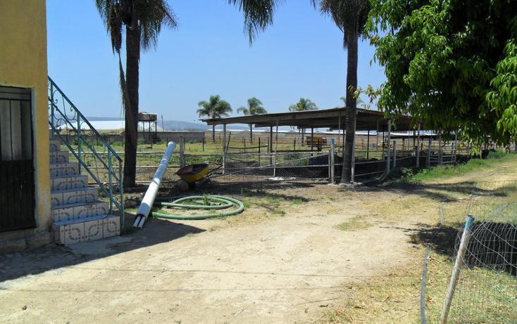 Foto de terreno habitacional en venta en  , nuevo méxico, zapopan, jalisco, 452412 No. 04