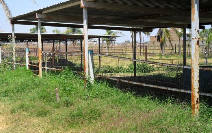 Foto de terreno habitacional en venta en  , nuevo méxico, zapopan, jalisco, 452412 No. 08