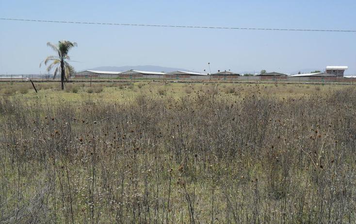 Foto de terreno habitacional en venta en  , nuevo méxico, zapopan, jalisco, 452412 No. 13