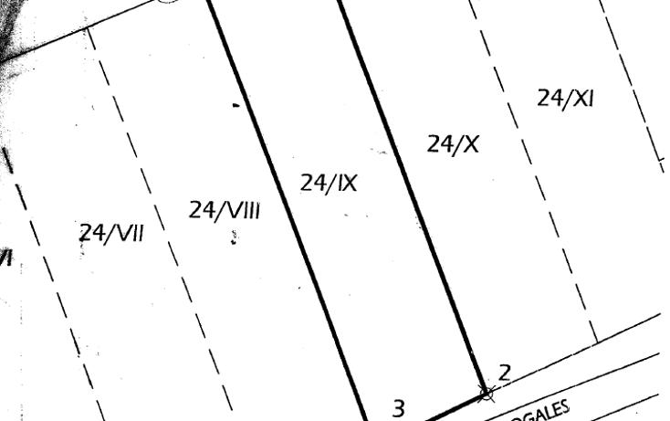 Foto de terreno comercial en renta en  , nuevo triunfo, chihuahua, chihuahua, 1165129 No. 03