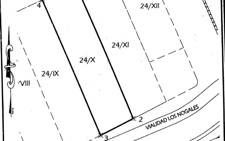 Foto de terreno comercial en renta en  , nuevo triunfo, chihuahua, chihuahua, 1165129 No. 04