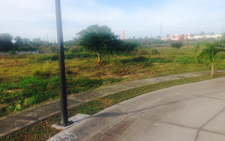 Foto de terreno habitacional en venta en  , nuevo vallarta, bah?a de banderas, nayarit, 1181673 No. 05