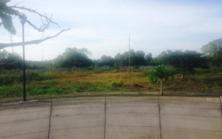 Foto de terreno habitacional en venta en  , nuevo vallarta, bah?a de banderas, nayarit, 1181673 No. 07