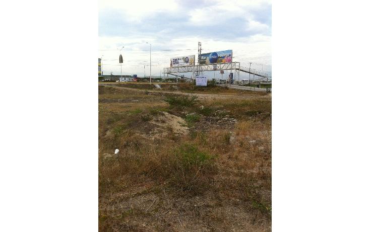 Foto de terreno comercial en renta en  , nuevo vallarta, bahía de banderas, nayarit, 1294009 No. 01
