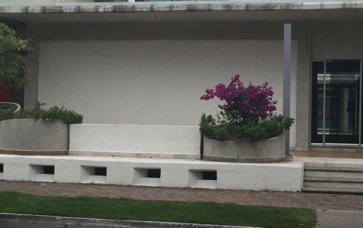 Foto de local en venta en, nuevo vallarta, bahía de banderas, nayarit, 1766602 no 11