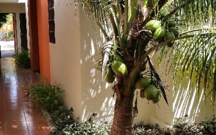 Foto de departamento en renta en, nuevo yucatán, mérida, yucatán, 1197889 no 02