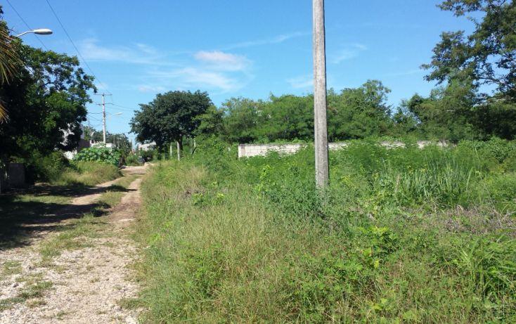 Foto de terreno habitacional en venta en, nuevo yucatán, mérida, yucatán, 1209015 no 02