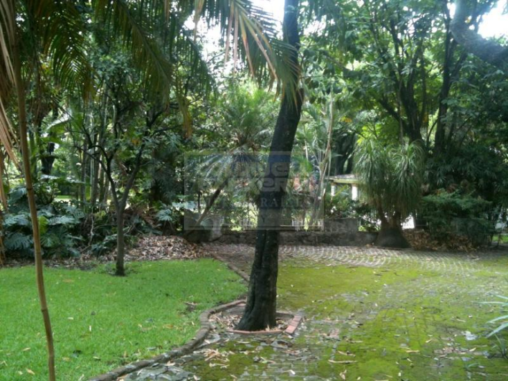 Foto de terreno habitacional en venta en numero reelección 264, emiliano zapata, emiliano zapata, morelos, 220246 No. 02