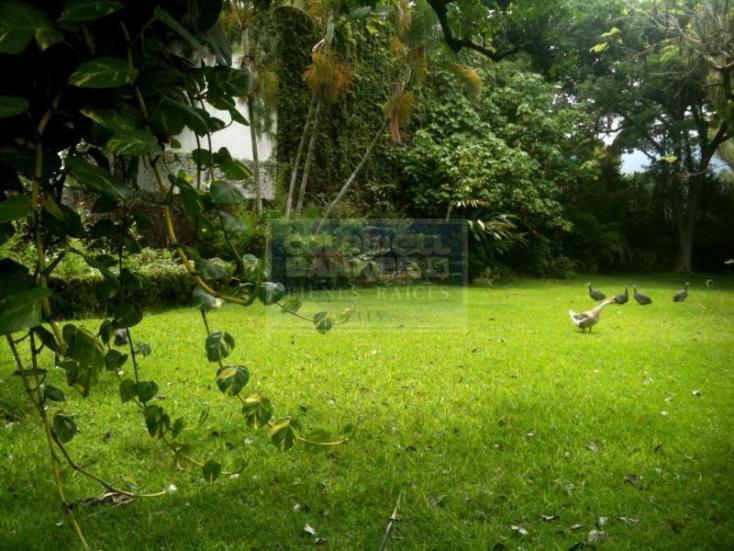 Foto de terreno habitacional en venta en numero reelección 264, emiliano zapata, emiliano zapata, morelos, 220246 No. 03