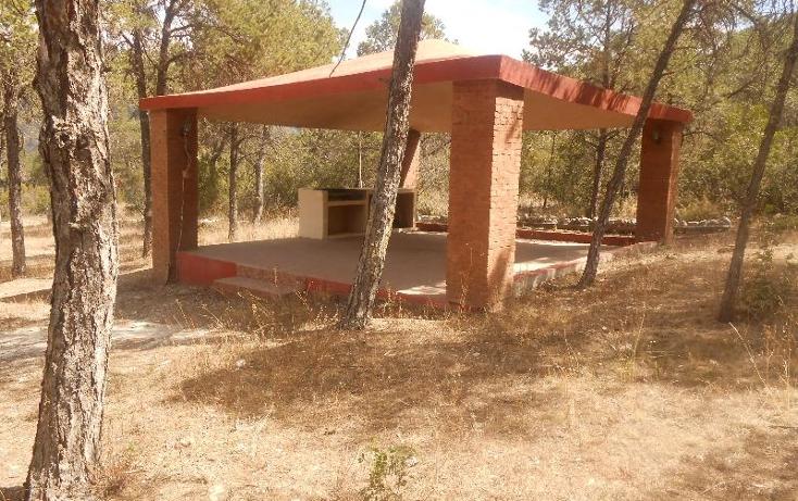 Foto de rancho en venta en  , nuncio, arteaga, coahuila de zaragoza, 396964 No. 06