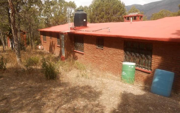Foto de rancho en venta en  , nuncio, arteaga, coahuila de zaragoza, 396964 No. 07