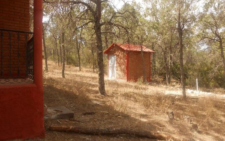 Foto de rancho en venta en  , nuncio, arteaga, coahuila de zaragoza, 396964 No. 20