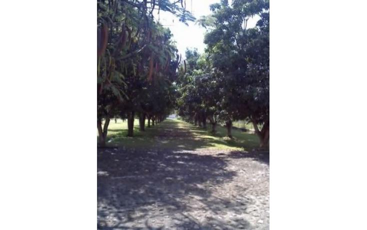 Foto de terreno habitacional en venta en, oacalco, yautepec, morelos, 510918 no 04