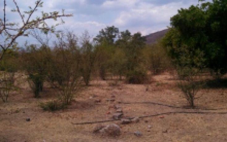 Foto de terreno habitacional en venta en, oaxtepec centro, yautepec, morelos, 2027911 no 05