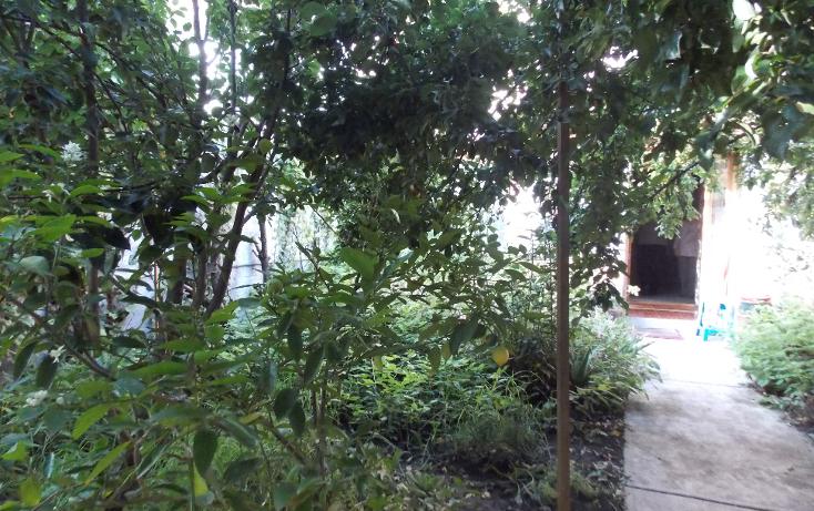 Foto de casa en venta en  , ocho cedros, toluca, m?xico, 1302321 No. 03