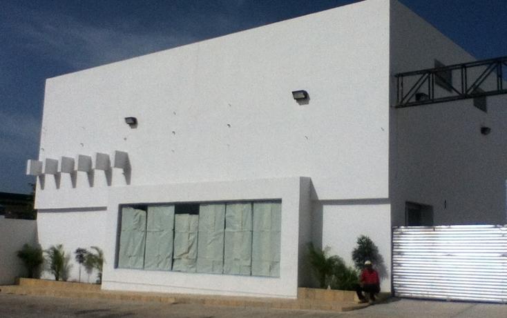 Foto de nave industrial en renta en  , ocosingo centro, ocosingo, chiapas, 1310061 No. 03