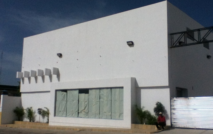 Foto de nave industrial en renta en  , ocosingo centro, ocosingo, chiapas, 1310061 No. 04